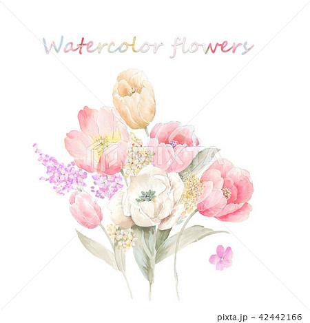 透明水彩 水彩画 花 42442166