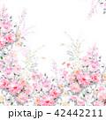 透明水彩 水彩画 花のイラスト 42442211