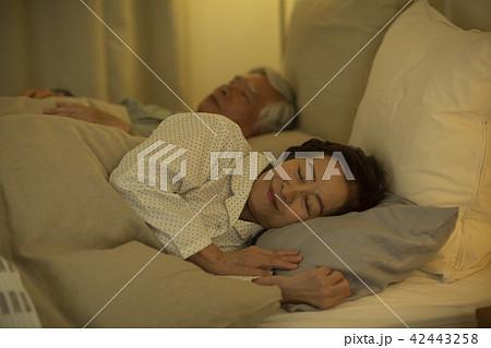 シニア夫婦 ベッド 42443258