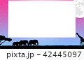 フレーム 42445097