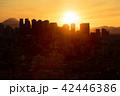 東京 新宿 夕景の写真 42446386