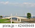 横浜 ベイブリッジ 臨港パークの写真 42449449