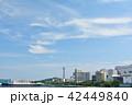 横浜 マリンタワー 青空の写真 42449840
