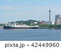 横浜 マリンタワー 豪華客船の写真 42449960