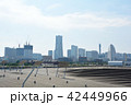 横浜 みなとみらい 大さん橋の写真 42449966