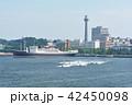 横浜 マリンタワー 豪華客船の写真 42450098