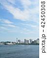 横浜 マリンタワー 青空の写真 42450308