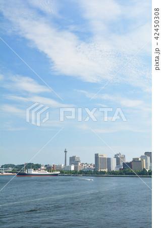 横浜 42450308