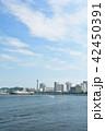 横浜 マリンタワー 青空の写真 42450391