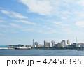 横浜 マリンタワー 青空の写真 42450395