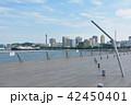 横浜 マリンタワー みなとみらいの写真 42450401