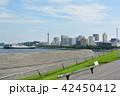 横浜 マリンタワー 大さん橋の写真 42450412