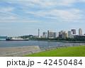 横浜 マリンタワー 大さん橋の写真 42450484
