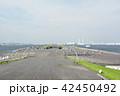 横浜 みなとみらい 大さん橋の写真 42450492