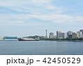 横浜 マリンタワー 豪華客船の写真 42450529