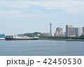 横浜 マリンタワー 豪華客船の写真 42450530