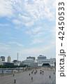 横浜 みなとみらい 大さん橋の写真 42450533