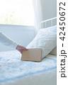 女性 ライフスタイル 本の写真 42450672