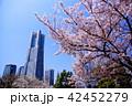 横浜 ランドマークタワー 桜 みなとみらい21 (神奈川県 横浜市) 42452279