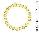 ベクター 宝石 ジュエリーのイラスト 42454997