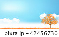 紅葉 秋 木のイラスト 42456730