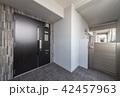 玄関ドア 42457963