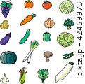 野菜カット集 42459973