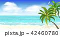 ヤシ ビーチ 浜辺のイラスト 42460780