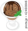 アイスクリーム チョコ 42460846