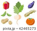 野菜 食材 じゃがいものイラスト 42465273