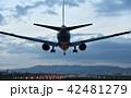 着陸態勢の旅客機 42481279