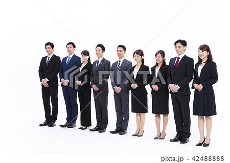 ビジネス 白バック 大人数 ビジネスマン 男性 42488888