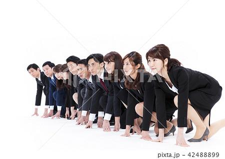 ビジネス 白バック 大人数 ビジネスマン 男性 42488899