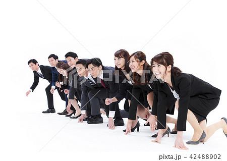 ビジネス 白バック 大人数 ビジネスマン 男性 42488902
