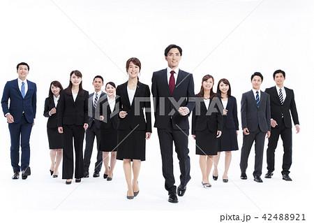 ビジネス 白バック 大人数 ビジネスマン 男性 42488921