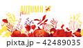 ベクター 植物 フラットのイラスト 42489035