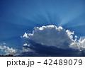 雲 光芒 青空の写真 42489079