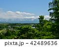 北海道 美瑛 風景の写真 42489636