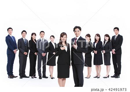 ビジネス 白バック 大人数 ビジネスマン 女性 男性 42491973