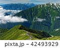 北アルプス・爺ヶ岳から見る蓮華岳と槍穂高連峰 42493929