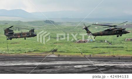陸上自衛隊の輸送ヘリコプター(向かって左CH-47,右UH-60) 42494133
