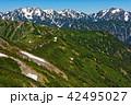 北アルプス・爺ヶ岳稜線から見る剣立山連峰と種池山荘 42495027