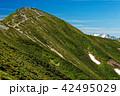 北アルプス・爺ヶ岳南峰と薬師岳 42495029