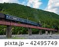 大井川鐵道 大井川第四橋梁を走るSL 蒸気機関車 42495749