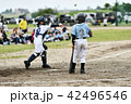 少年野球の試合 42496546