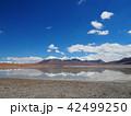 自然 ボリビア 湖の写真 42499250