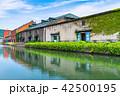 小樽 小樽運河 運河の写真 42500195
