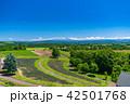 北海道 美瑛 晴れの写真 42501768