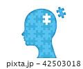 パズル 42503018