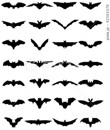 black silhouettes of bats 42503370
